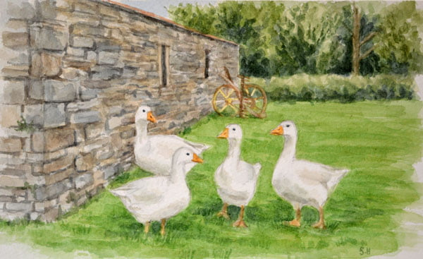 Geese Watercolour